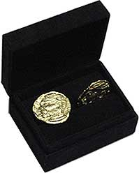 300 GOLD COINS PROP REPLICA