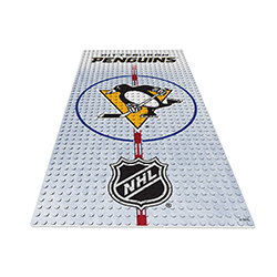 OYOHDPPP-NHL DISPLAY PLATE PENGUINS
