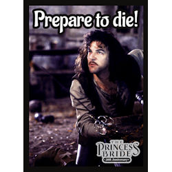 ULGDPAPB303-PRINCESS BRIDE 30TH AN PREPARE