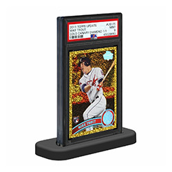 UPCSGPSA-GRADED PSA CARD STAND 10-PACK