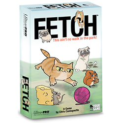 UPE10053-FETCH GAME