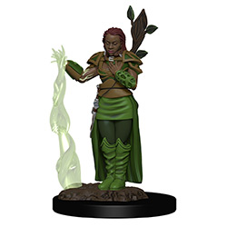 WKDD93009-D&D ICONS PREM FIG HUMAN FEMALE DRUID