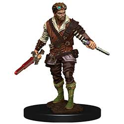 WKDD93022-D&D ICONS PREM FIG HUMAN ROGUE MALE