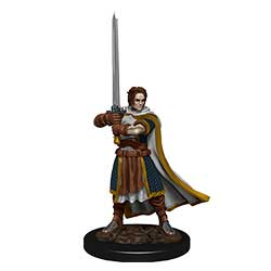 WKDD93023-D&D ICONS PREM FIG HUMAN CLERIC MALE