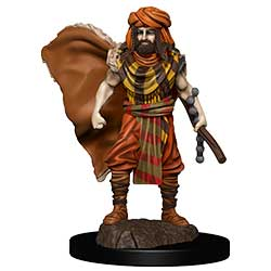 WKDD93031-D&D ICONS PREM FIG HUMAN DRUID MALE