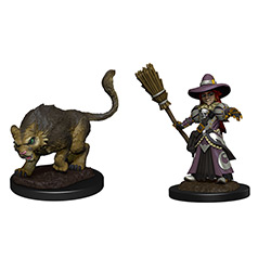 WKM73788-WARDLINGS GIRL WITCH & CAT